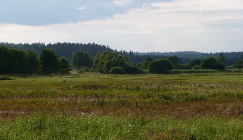Birding Trip W Poland & E Germany